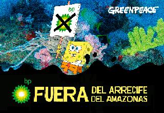 Arrecifes del Amazonas